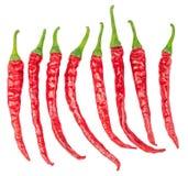 Ensemble de poivrons de piment rouge chauds d'isolement Photo stock