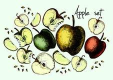 Ensemble de pommes de dessin Image stock