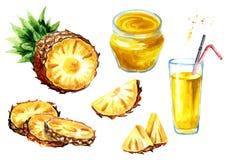 Ensemble de produits d'ananas Illustration tirée par la main d'aquarelle, d'isolement sur le fond blanc Image stock
