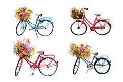 Ensemble de quatre bicyclettes d'aquarelle avec des fleurs sur f blanc Photographie stock