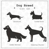 Ensemble de quatre races stylisées de chien Photographie stock libre de droits