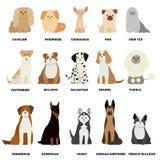Ensemble de race de chien illustration stock