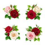 Ensemble de rose, de Bourgogne et de roses blanches Illustration de vecteur illustration de vecteur