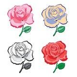 Ensemble de roses artistiques de dessin de main Photos stock