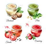 Ensemble 1 de sauce Bechamel, pesto, tomate, canneberge Illustration tirée par la main d'aquarelle d'isolement sur le fond blanc illustration de vecteur