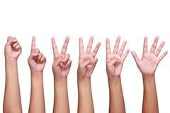 ensemble de signes de main de dame d'isolement sur le blanc Images libres de droits