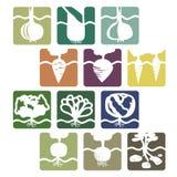 Ensemble de signes végétaux illustration libre de droits