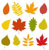 Ensemble de silhouettes colorées d'isolement de feuilles d'automne Image stock