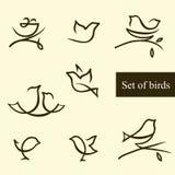 Ensemble de silhouettes des oiseaux Photos stock