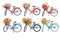 Ensemble de six bicyclettes d'aquarelle avec des fleurs sur le fond blanc Photo stock