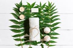 Ensemble de station thermale avec la serviette et le savon sur le fond en bois blanc avec les feuilles vertes Images stock