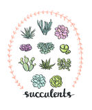 Ensemble de Succulent illustration de vecteur
