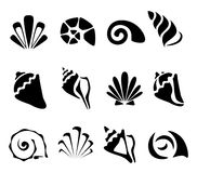 Ensemble de symbole abstrait de coquille illustration de vecteur