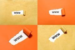 Ensemble de texte de WWW Image libre de droits