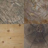 Ensemble de texture en bois Photographie stock libre de droits