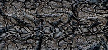 Ensemble de textures de peau de serpent Photographie stock libre de droits