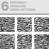Ensemble de 6 textures sans couture de zèbre en tant que milieux illustration de vecteur
