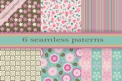 Ensemble de textures sans joint Cherry Blossoms Textu sans couture de ressort Image stock