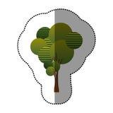 ensemble de timbre d'icône abstraite d'arbre Images stock