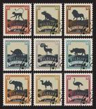 Ensemble de timbres avec différents animaux illustration libre de droits