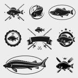 Ensemble de timbres et de labels de poissons. Vecteur Photos libres de droits