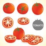 Ensemble de tomate dans le divers format de styles Photographie stock
