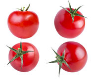 Ensemble de tomates rouges d'isolement sur le blanc Photo libre de droits