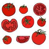 Ensemble de tomates rouges fraîches Moitié de la tomate, tranche de tomate, Cherry Tomato D'isolement sur un fond blanc Griffonna Photo libre de droits
