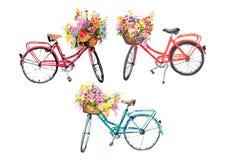 Ensemble de trois bicyclettes d'aquarelle avec des fleurs sur le fond blanc Images libres de droits