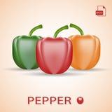 Ensemble de trois poivrons doux frais vert, rouge et orange Image stock