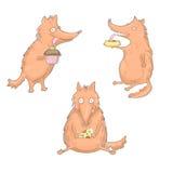 Ensemble de trois renards de consommation Photos libres de droits
