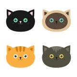 Ensemble de tête de chat Chats siamois, rouges, noirs, oranges, gris de couleur dans le style plat de conception Personnage de de Photographie stock libre de droits