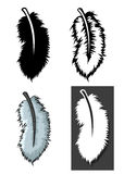 Ensemble de types de plumes avec le concept différent Images libres de droits