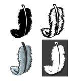 Ensemble de types de plumes avec le concept différent Photos libres de droits