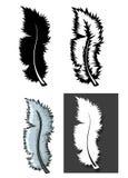 Ensemble de types de plumes avec le concept différent illustration stock