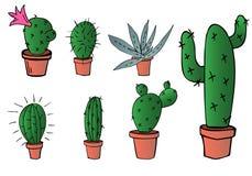 Ensemble de vecteur de cactus et d'aloès verts à la maison dans le pot brun Image libre de droits