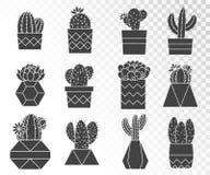 Ensemble de vecteur de cactus et de succulents dans des pots de fleur Images libres de droits