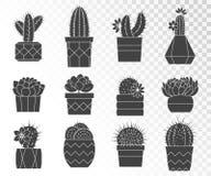 Ensemble de vecteur de cactus et de succulents dans des pots de fleur Photo stock