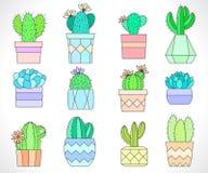 Ensemble de vecteur de cactus et de succulents dans des pots de fleur Style plat Images libres de droits