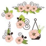 Ensemble de vecteur d'éléments de conception florale Images stock
