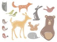 Ensemble de vecteur d'animaux et d'oiseaux de bande dessinée Habitants stylisés de forêt Ramassage d'animaux sauvages Illustratio Illustration de Vecteur