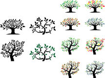 Ensemble de vecteur d'arbres avec des saisons Photographie stock