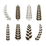 Ensemble de vecteur d'icônes de blé, symboles de grain, collection différente de formes, éléments noirs de conception d'isolement illustration libre de droits