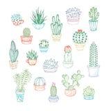 Ensemble de vecteur d'icônes linéaires des cactus et des succulents Photo libre de droits