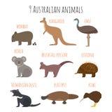 Ensemble de vecteur d'icônes australiennes d'animaux Photographie stock