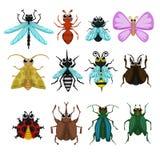 Ensemble de vecteur d'insecte d'insecte de bande dessinée illustration de vecteur