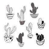 Ensemble de vecteur de cactus d'intérieur dans des pots Ramassage de centrales stylisées Mésanges décoratives art linéaire Dessin Image libre de droits