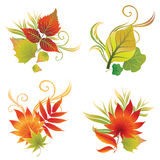 Ensemble de vecteur de lames colorées d'automne Photo stock