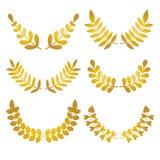 Ensemble de vecteur de lauriers floraux de conception d'or d'isolement sur le fond blanc illustration stock