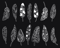 Ensemble de vecteur de plumes d'oiseau stylisées Collection de plumes pour la décoration Dessin noir et blanc à la main art linéa Illustration de Vecteur